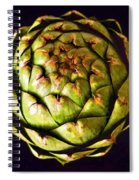The Patterns Of The Artichoke Spiral Notebook