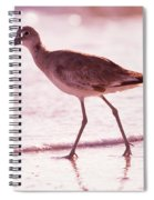 The Peace Piper Spiral Notebook