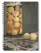 The Peach Glass Spiral Notebook