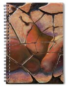 The Pears Fresco With A Crackle Finish Spiral Notebook