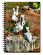 The Pelican Clan Spiral Notebook