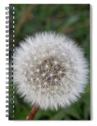 The Perfect Dandelion Spiral Notebook