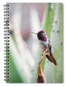 The Perfect Perch  Spiral Notebook