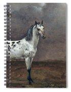 The Piebald Horse Spiral Notebook