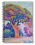 The Pine Tree At Saint Tropez Spiral Notebook