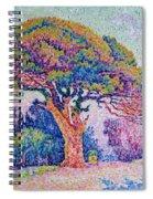 The Pine Tree At Saint Tropez Spiral Notebook
