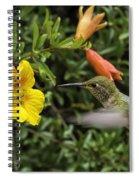 The Pollinatrix Spiral Notebook