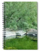 The Pond Spiral Notebook