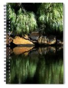 The Pond On Lamplight Lane Spiral Notebook