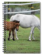 The Ponys Spiral Notebook