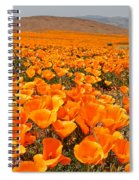 The Poppy Fields - Antelope Valley Spiral Notebook