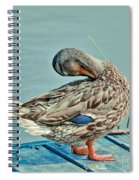 The Pose Spiral Notebook