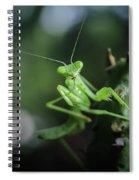 The Praying Mantis Spiral Notebook