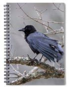 The Preening Crow Spiral Notebook