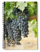 The Promise Of New Wine Spiral Notebook