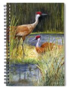 The Protector - Sandhill Cranes Spiral Notebook