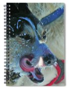 The Race ... Spiral Notebook