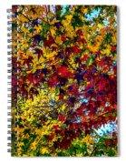The Rainbow Tree Spiral Notebook