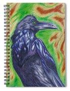 The Raven  Spiral Notebook