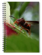 The Real Gardener Spiral Notebook