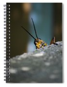 The Real Hopper Spiral Notebook