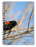 The Red Wing Spiral Notebook