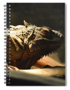 The Reptile World Spiral Notebook
