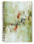 The Reversal Spiral Notebook