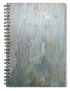 The Rhythm Of Falling Rain Spiral Notebook