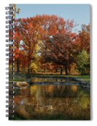 The Rich Autumn Colors In Forest Park. Spiral Notebook