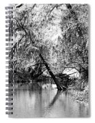 The River Filtered Spiral Notebook