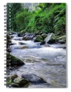 The River Sings Spiral Notebook