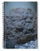 Karavanke Spiral Notebook