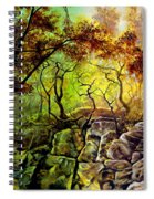 The Rocks In Starachowice Spiral Notebook