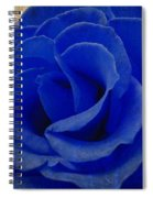 The Rose Of Sadness Spiral Notebook