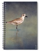 The Sanderling 2 By Darrell Hutto Spiral Notebook