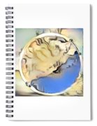 The Satsuma Spiral Notebook