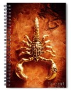 The Scorpion Scarab Spiral Notebook