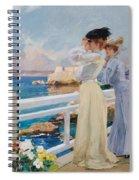 The Seagulls Spiral Notebook