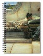 The Secret Spiral Notebook