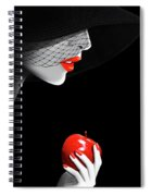 The Seduction Spiral Notebook