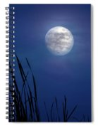 The Seventh Moon Spiral Notebook