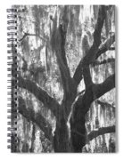 The Silver Tree Spiral Notebook