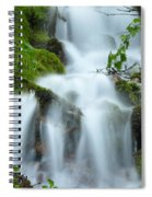The Slithering Mist Spiral Notebook