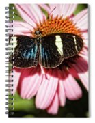 The Small Blue Grecian Spiral Notebook