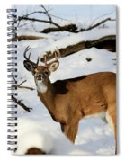 The Smell Spiral Notebook