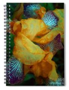The Smell Of The Rain Spiral Notebook