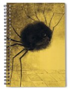 The Smiling Spider Spiral Notebook