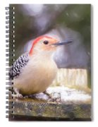 The Smiling Woodpecker  Spiral Notebook