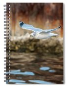 The Soaring Gull Spiral Notebook